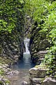 Сочинский национальный парк. Крабовое ущелье 3.jpg