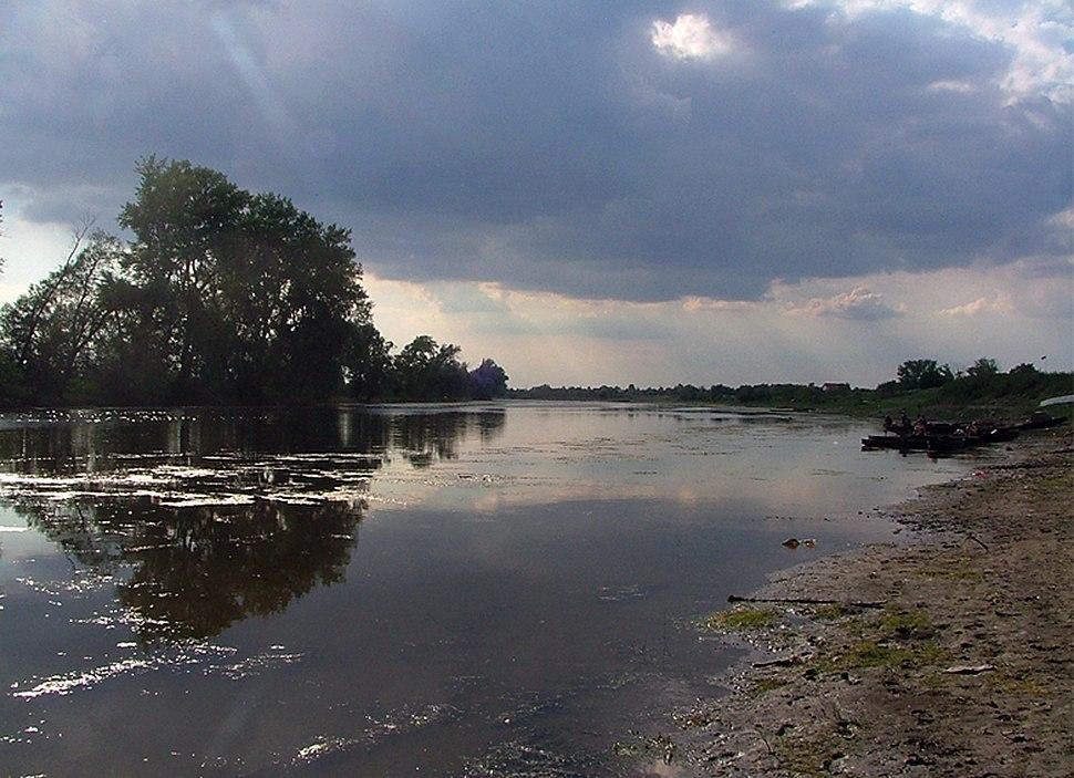 Специјални резерват природе Ковиљско-петроварадински рит
