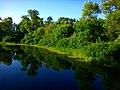 Ставок на Трухановому острові - panoramio (1).jpg