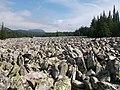 Таганай - Большая каменная река - panoramio (2).jpg