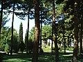 پارک شهر سمنان - panoramio.jpg