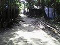 লাউতলী বাউল বাড়ীর প্রবেশ পথ.jpg