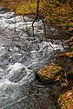 丹藤川渓流 Tando gorge - panoramio.jpg