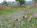 合山市北泗瀑泉风光 - panoramio.jpg