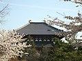 大仏殿後ろ姿 - panoramio.jpg