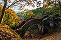 拱北殿拱橋楓紅之美.jpg