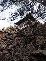 故宫御花园 - panoramio (4).jpg