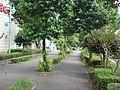 歳時記のみち05 - panoramio.jpg
