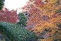 生田緑地 - panoramio.jpg