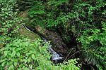 白岩の滝 - panoramio (3).jpg