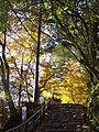神護寺参道 京都市右京区 2013.11.21 - panoramio.jpg