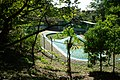 綱島公園プール - panoramio.jpg