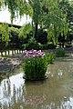 菖蒲池 - panoramio (4).jpg