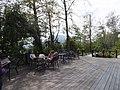 觀霧森林遊樂區 Guanwu Forest Recreation Area - panoramio.jpg