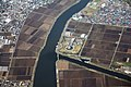 005 Agriculture along Tone River in Omigawa, Japan.JPG