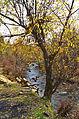 0163 - Nordkorea 2015 - Sinhuangsan - Fluss aus Stein (22344720033).jpg