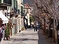 07170 Valldemossa, Illes Balears, Spain - panoramio (66).jpg