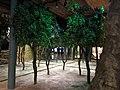 075 Museu d'Història de Catalunya, arbres fruiters vora el mas.JPG
