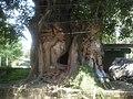 0901 bakhtapur tree (3048909589).jpg