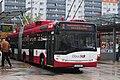 12-11-02-bus-am-bahnhof-salzburg-by-RalfR-07.jpg