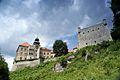 187vik Zamek w Pieskowej Skale. Foto Barbara Maliszewska.jpg