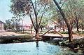 1912 - In Dorney Park.jpg