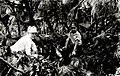 1930. Shaded ponderosa pine top with thermometers in place. Slash temperature studies. Klamath Falls, Oregon. (38221501681).jpg