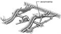 1963 Chrysler turbine car rear suspension ru.png