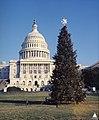 1973 U.S. Capitol Christmas Tree (30995526483).jpg
