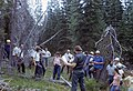 1977. Forest pathology group in the field. (35291740475).jpg