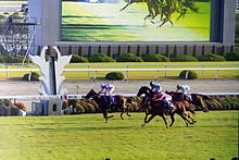 List Of Horse Racing Venues Wikipedia