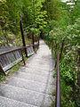 2009-0619-CastleRock-stairs.jpg