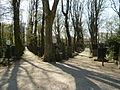 2010-04-18 676 Jüdischer Friedhof - fec AMA.B.JPG