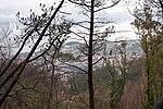 2011-03-05 03-13 Madeira 047 Terreiro da Luta (5543453786).jpg