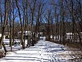 2014-01-24 11 28 24 Path to the Rutledge Avenue Footbridge over the West Branch Shabakunk Creek.JPG