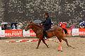 2015-08-23 16-18-28 rallye-equestre.jpg