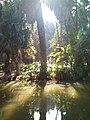20150727 170216(1)البحيرة في حديقة التجارب.jpg