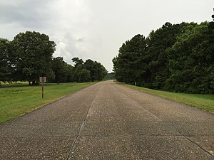 Colonial Parkway - Typical section of the parkway. Note lack of lane markings, despite this section being designated for two-way traffic.