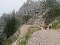 2017-07-23 (43) Way from Ybbstaler Hütte to Steinbachtal at Dürrenstein (Ybbstaler Alpen).jpg
