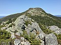 2017-09-11 13 10 05 View north along the Long Trail between the Nose and the Chin of Mount Mansfield within Mount Mansfield State Forest on the border of Stowe, Lamoille County and Underhill, Chittenden County in Vermont.jpg