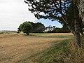 2018-07-18 Mundesley golf course (2).JPG