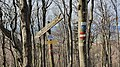 2020-03-01 (157) Fingerposts at Yetisteig, Texingtal, Austria.jpg