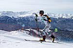 27.02 ski alpin sf 11.jpg