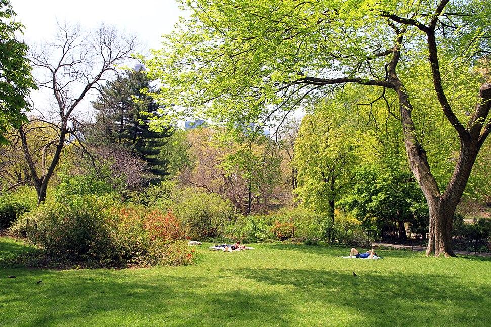 2960-Central Park-Strawberry Fields