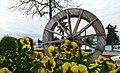 3424163 آستارا میزبان گل های لاله.jpg