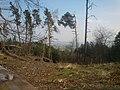 506 01 Holín, Czech Republic - panoramio (17).jpg
