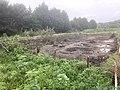 5830 Groen.Westpark.DeHeld.Leegkerk.202009 Brug Water Zwedenlaan Tarralaan Scounting VariaSki Hoogkerk Buitengebied.jpg
