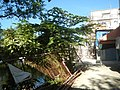 587Valenzuela City Metro Manila Roads Landmarks 18.jpg