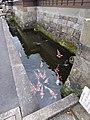5 Chome Obi, Nichinan-shi, Miyazaki-ken 889-2535, Japan - panoramio (3).jpg
