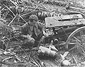 75-mm-japanese-gun-mt-schleuther.jpg